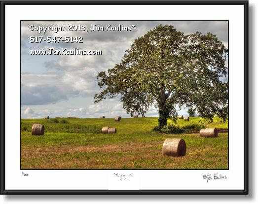 Click on this image to see an enlarged view of IRISH HILLS Hay Bales Irish Hills photo art print.